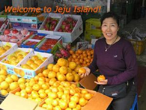 japan zum kennenlernen der tour